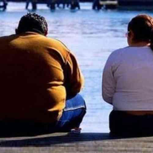 La obesidad se hereda a través del esperma