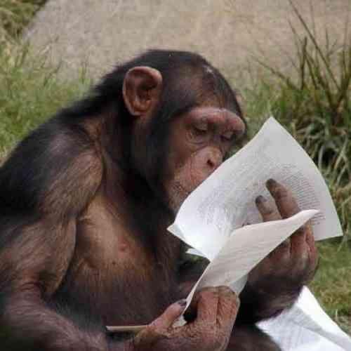 El caso del simio sabio: Simios que hablan