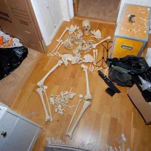 Detienen a una mujer sueca por mantener relaciones sexuales con un esqueleto