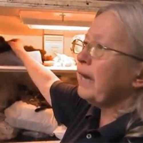 Mujer conservaba 100 gatos muertos en su nevera
