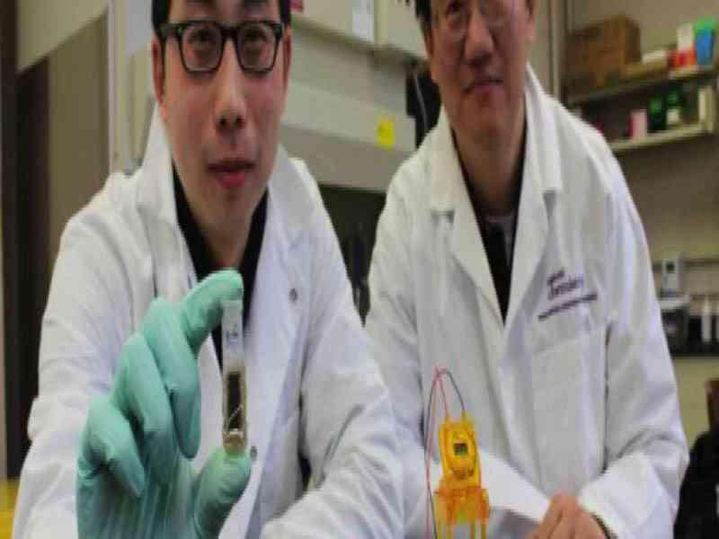 Un grupo de científicos crea una batería para móvil con azúcar